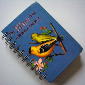 repurposed bird book journal