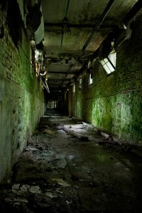 photo of moldy tunnel in Norwich State Hospital